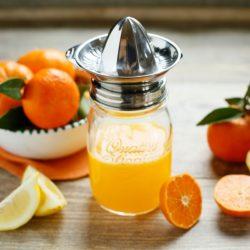 HappyTappi roestvrijstalen citruspers deksel met glazen pot