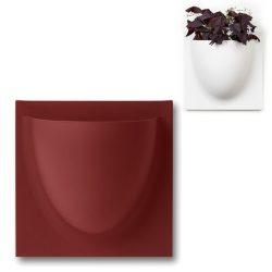 vertiplants mini robijn rood 15 x 15 cm